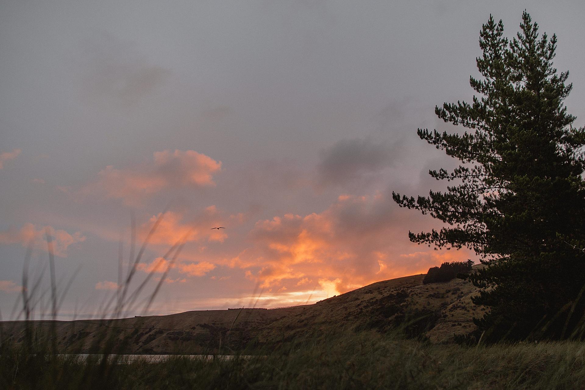 family-roadtrip-neuseeland-travelnewzealand-danielzube_0493.jpg