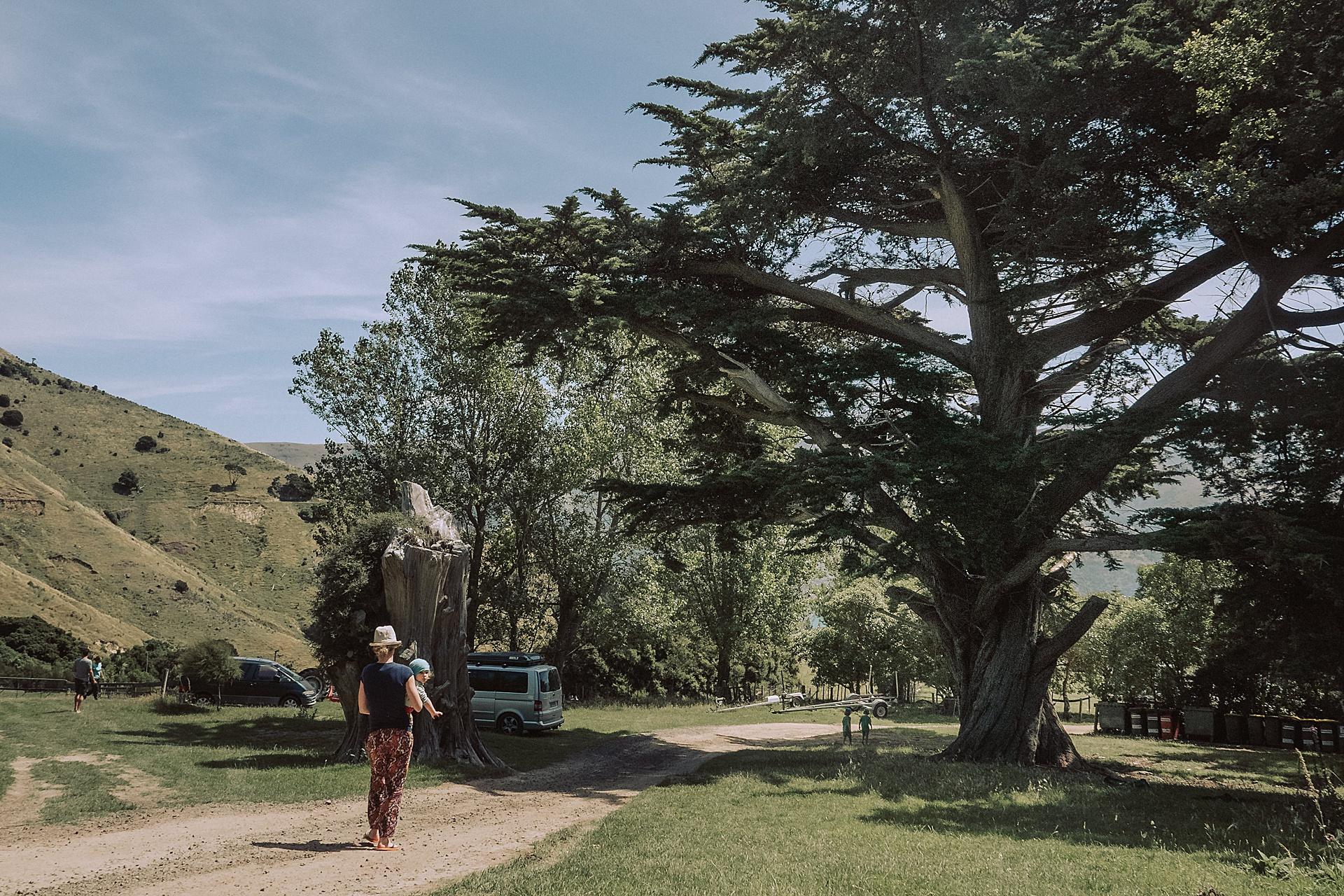 family-roadtrip-neuseeland-travelnewzealand-danielzube_0501.jpg