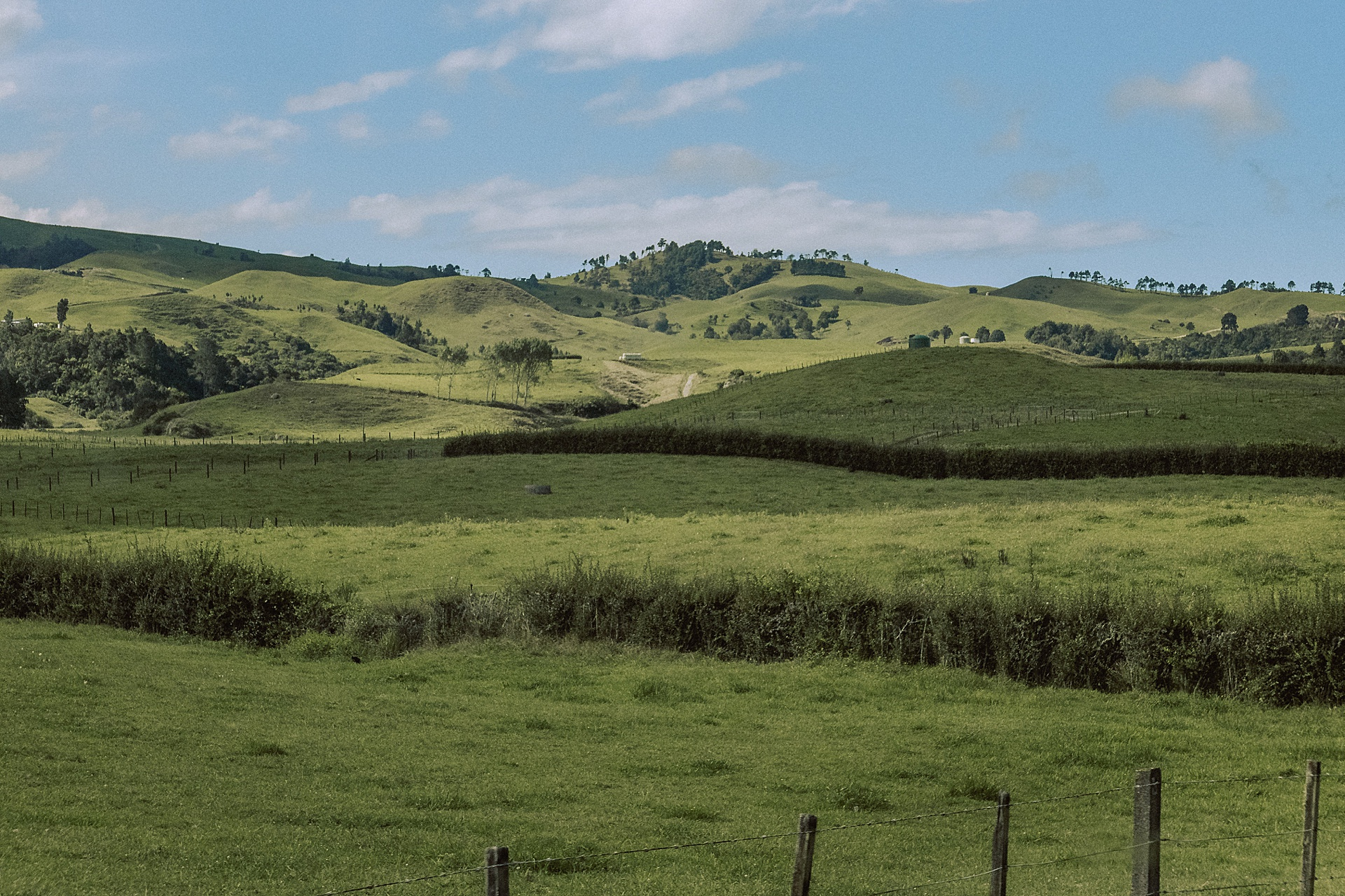 family-roadtrip-neuseeland-travelnewzealand-danielzube_0668.jpg