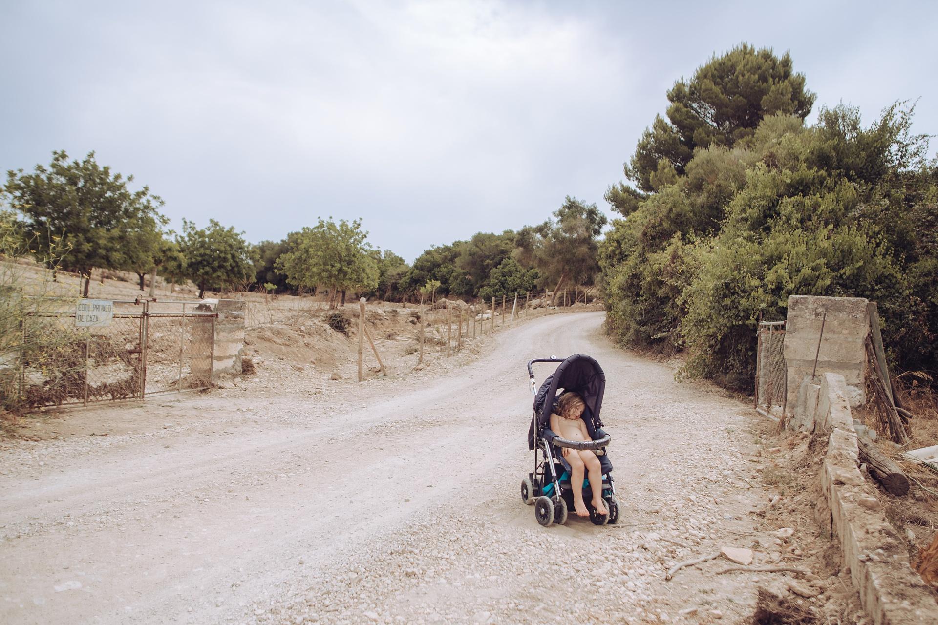Mittagsschlaf neben Zitronenbäumen auf Mallorca